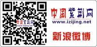 中国紫荆网新浪官方微博